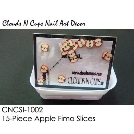 CNCSI-1002