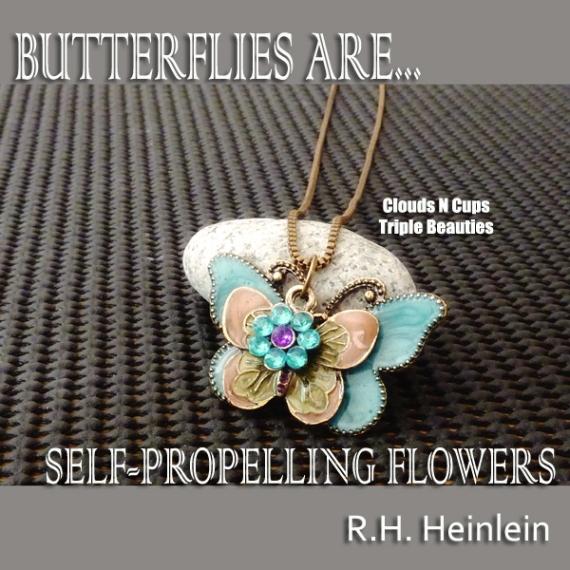 03112012 - Butterflies Are