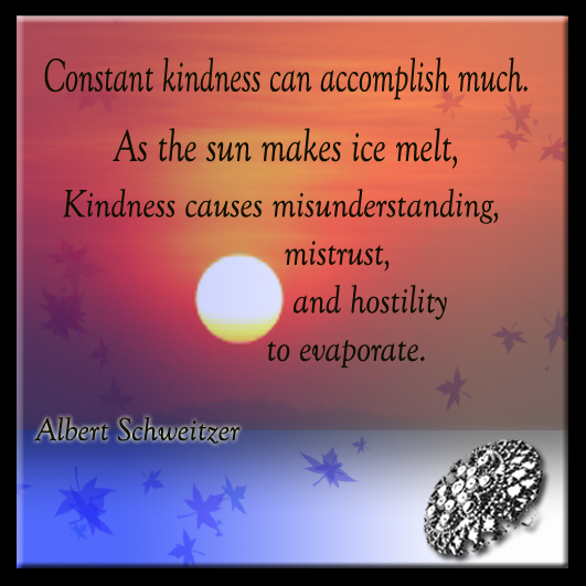 Constant Kindess - 6-1-2013