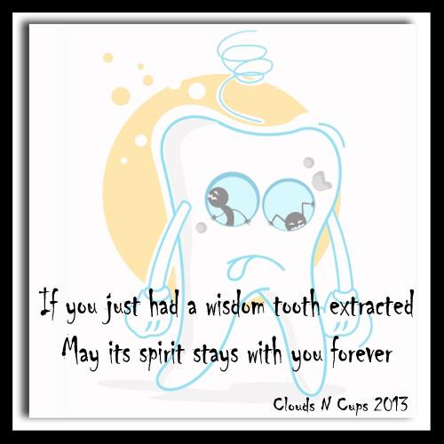 22032013 - Wisdom Humour