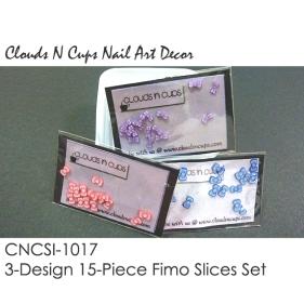 CNCSI-1017